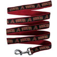 MLB Arizona Diamondbacks Small Pet Leash