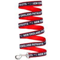 NFL New England Patriots Small Pet Leash