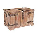 Household Essentials® Victorian Large Storage Trunk in Brown