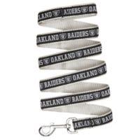 NFL Oakland Raiders Large Pet Leash