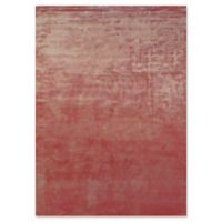 Feizy Sur 2-Foot x 3-Foot Accent Rug in Rust