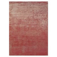 Feizy Sur 4-Foot x 6-Foot Area Rug in Rust