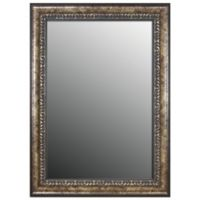 Hitchcock-Butterfield 25-Inch x 61-Inch Euro Olde World Vintage Wall Mirror in Silver