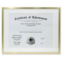 Lawrence Frames 11-Inch x 14-Inch Matted Aluminum Document Frame in Gold