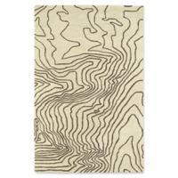 Kaleen Pastiche Topography 3-Foot x 5-Foot Accent Rug in Brown