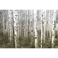 Parvez Taj Aspen Highlands 18-Inch x 12-Inch Canvas Wall Art