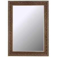 Hitchcock-Butterfield Vintage Pacific Waves 28-Inch x 38-Inch Wall Mirror in Bronze/Gold