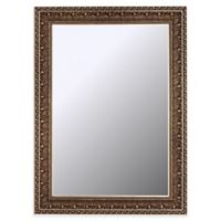 Hitchcock-Butterfield Vintage Pacific Waves 25-Inch x 61-Inch Wall Mirror in Bronze/Gold