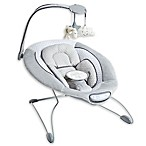 Serta® iComfort Premium Infant Bouncer