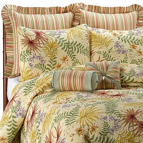 Fiji Quilt 100 Cotton Bed Bath Amp Beyond