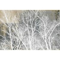 Parvez Taj Frosty White Branches 24-Inch x 16-Inch Canvas Wall Art