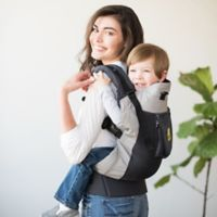 Líllébaby® Carryon Airflow Toddler Carrier in Silver