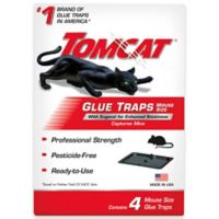 Tomcat® 4-Pack Mouse Glue Trap with Eugenol
