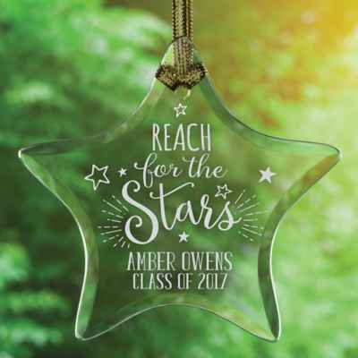 Reach for the Stars Sun Catcher
