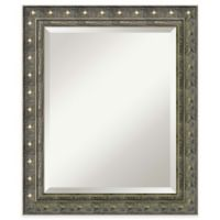Amanti Barcelona 20-Inch x 24-Inch Bathroom Wall Mirror in Champagne