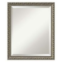 Amanti Parisian 19-Inch x 23-Inch Bathroom Mirror in Silver