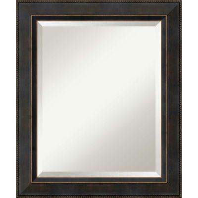 21 Inch X 25 Signore Rectangular Bathroom Mirror In Bronze