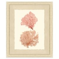 Double Sea Fan Print I 20-Inch x 24-Inch Framed Wall Art