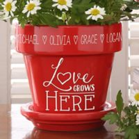 Love Grows Here Flower Pot in Red