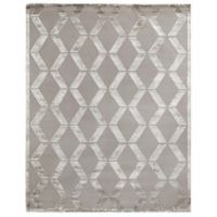 Exquisite Rugs Metro Velvet 4-Foot x 6-Foot Area Rug in Silver