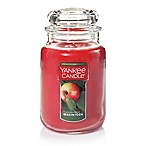 Yankee Candle® Housewarmer® Macintosh Large Classic Jar Candle