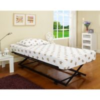 K&B Furniture B59-3 Rollout Pop-Up Trundle Bed in Black/Mahogany