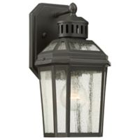 The Great Outdoors® by Minka-Lavery® Hawk's Point 1-Light Lantern in Oil Rubbed Bronze