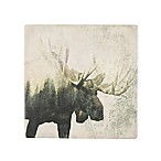 Thirstystone® Occasions Moose Landscape Square Coaster