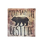 Thirstystone® Occasions Mountain Life Best Life Square Coaster