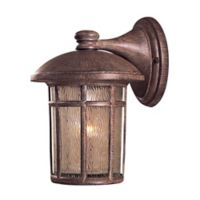 The Great Outdoors® by Minka-Lavery® Cranston 1-Light Wall Mount Lantern in Rust