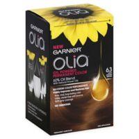Garnier® Olia® Brilliant Color Permanent Hair Color in 6.3 Light Golden Brown