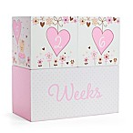 Little Me® Sweet Bear Age Décor Blocks in Pink