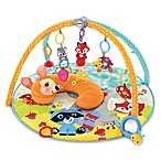 Fisher-Price® Moonlight Meadow Deluxe Play Gym