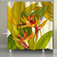 Laural Home® Tropical Bird of Paradise Shower Curtain