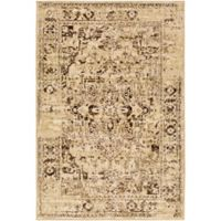Surya Peroz Classic Distressed Border 6-Foot 7-Inch x 9-Foot 6-Inch Area Rug in Beige