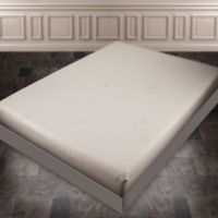 Independent Sleep 10-Inch Memory Foam Twin Mattress