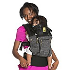 LÍLLÉbaby COMPLETE ALL SEASONS Baby Carrier in 5th Avenue