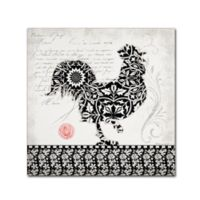 Stephanie Marrot's Rooster I B&W 14-Inch Square Canvas Wall Art