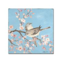 Stephanie Marrot Blossoms Birds II 14-Inch Square Canvas Wall Art