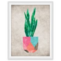"PTM Images ""Cactus Geo II"" 13.5-Inch x 17.5-Inch Print Wall Art"