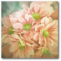 Courtside Market Beautiful Daisies 16-Inch Square Canvas Wall Art