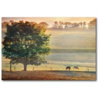 Courtside Market Horse on the Prairie 20-Inch x 16-Inch Canvas Wall Art