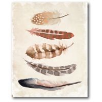 Courtside Market Foaling Feathers 16-Inch x 20-Inch Canvas Wall Art