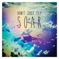 Courtside Market Don't Just Fly Soar Wall Decal