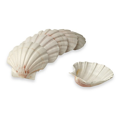 Fox Run Small Canape Baking Shells (Set of 6)
