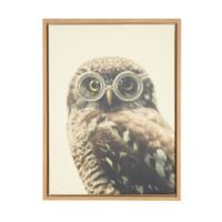 Kate and Laurel Sylvie Owl Natural Framed Canvas Wall Art