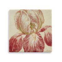 Thirstystone® Floral Fresco III Single Coaster