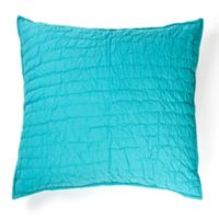 Amity Home Base Camp Square Throw Pillow in Aqua