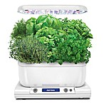 Miracle-Gro® AeroGarden™ Harvest Plus with Seed Kit in White