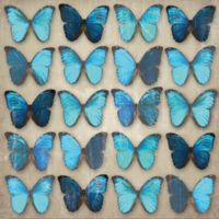 Arthouse Butterfly Foil Finish Canvas Wall Art in Teal